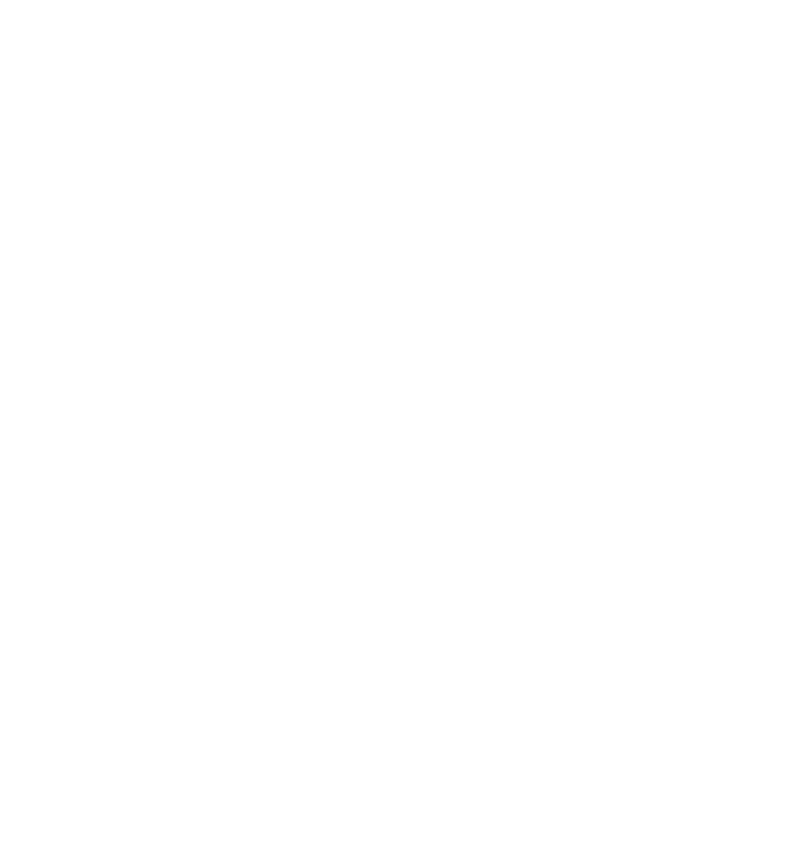 Nafta-service